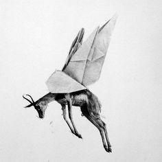 "Artist: Kobus Rossouw Title: Origami Bok "" Ink Pen Drawings, South African Artists, Mythological Creatures, Charcoal Drawing, Red Lipsticks, Origami, Print Design, Art Prints, Artwork"