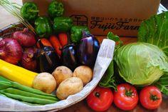 野菜宅配 標高1000m