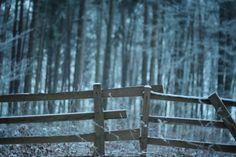 Moravian Karst #nature #explore #trip