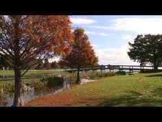 Birding Adventures TV features Lake County, Florida Episode 1