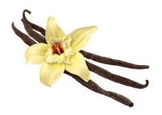 Vanilla – in any shape or form, always smells divine.
