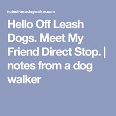 Hello Off Leash Dogs. Meet My Friend Direct Stop.   notes from a dog walker