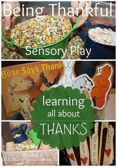 Bear Says Thanks Sensory Bin Project Gratitude & Sensory Play Party!
