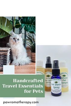 Four of my essential natural products for pets. Products are handcrafted by holistic veterinarian Dr. Deneen Fasano using organic ingredients such as aloe vera, herbs and essential oils.Products are safe for both cats and dogs. Flea Powder For Dogs, Cat Skin Problems, Copaiba Oil, Cat Allergies, Pet Shampoo, Flea Treatment, Cats For Sale, Healthy Pets, Pet Travel