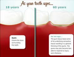 As your tooth goes from age 18 to 60 years old...