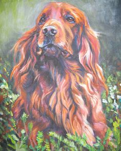Irish Setter art print CANVAS print of LA Shepard painting 8x10 by TheDogLover on Etsy https://www.etsy.com/listing/51635249/irish-setter-art-print-canvas-print-of