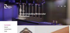 News & Updates – MIT Media Lab   Web Design Inspiration #ux #ui #interface #animation #interaction #userexperience #dribbble #behance #design #uitrends #instaui #magazineduwebdesign #interface #mobile #application #webdesign #app #concept #userinterface #inspiration #appdesign