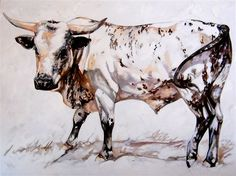 White Nguni Bull - Oil on canvas 762 x 1016 Pet Cows, Longhorn Cattle, Animals Black And White, Animal Paintings, Canvas Paintings, Canvas Art, Cow Painting, South African Artists, Cow Art