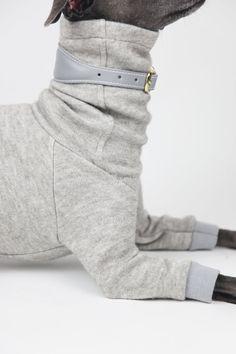 Italian Greyhound Love Jogger Pants Boys Sweatpants