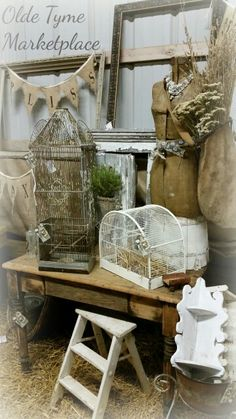 Birdcage display at Franklin Barn Market.