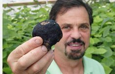 GARLAND TRUFFLES The Truffle Experts | EDE ONLINE