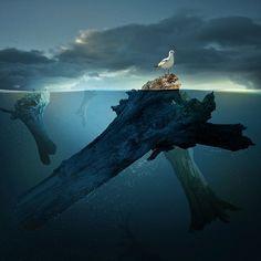 20 Dream-Like Photo Manipulations by Caras Ionut   Bored Panda