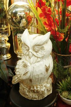 white owl  Thanks for pinning!  See additional photos on our Facebook page.  Our photo will take you there.