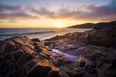 Noosa National Park For Photography Lovers Alexandria Bay, Fairy Pools, In The Tree, Sunshine Coast, White Sand Beach, Photo Location, Landscape Photographers, Great Places, Travel Photos