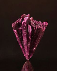 Erythrite | #Geology #GeologyPage #Mineral  Locality: Bou Azar District Ouarzazate Province Morocco  Size: 4 x 3.2 cm  Photo Copyright  Mia Dixon  Geology Page www.geologypage.com