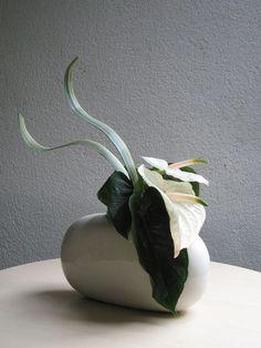 flower arrangement, Anthurium, Phormium by mandy