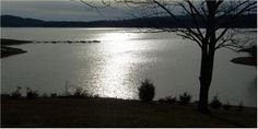Home on 8.81 Unrestricted Acres - Douglas Lake  $412,000