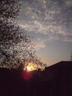 Sunset, and cloudy sky Puesta de sol, nubecillas lindas =)