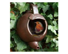 Great idea to re-purpose old tea pot.  I love to find things to do with odd stuff!