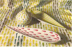 Image result for stig lindberg fabrics