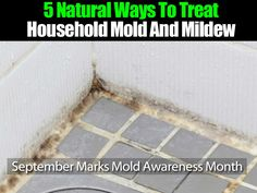 5 Natural Ways To Treat Household Mold And Mildew -