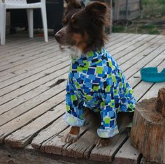 Sera modeling my jersey pajamas. She doesn't need them herself considering she has a double coat, but these are fantastic all year round for smooth coated dogs such as Italian greyhounds, Chinese cresteds or chihuahuas. Can be made for big dogs too!