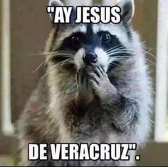 Ay jesus de Veracruz