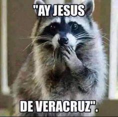 Hay jesus de Veracruz