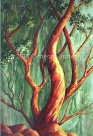 arbutus tree painting - Google Search