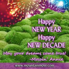 Moss For Sale, Moss Garden, Dream Come True, Happy New Year, Dreaming Of You, Landscaping, Environment, Gardening, Outdoor