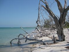 Captiva Island, Florida