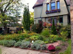 35 Best Grassless No Mow Yards Images Garden Design 400 x 300