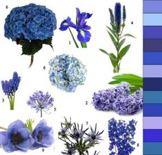 Blue wedding flowers/ volusiacountyweddings/ www.callaraesfloralevents.com