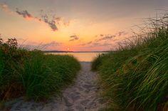 Dunegrass Sunset, Ferry Beach, Maine