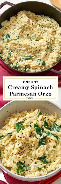 One Pot, Pan, or Dish Creamy Spinach, Parmesan & Orzo Pasta Recipe. Need recipes and ideas for easy weeknight dinners and meals? Vegetarian and perfect for a side dish or a main dish. To make this modern comfort food, you'll need: olive oil, onion, garlic, orzo, chicken or veggie/vegetable broth, milk, baby spinach or other greens, parm cheese. #vegetarianpastadishes #vegetarianrecipes #pastafoodrecipes