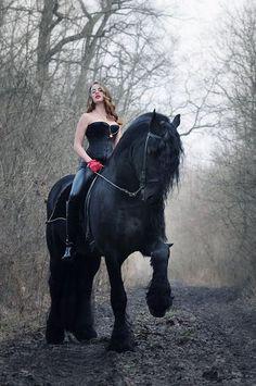 My Kinda Horse! So Beautiful. Someday I shall have one!