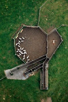 aerial down on the farm