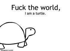 i'm a fuckin' turtle bitches!