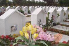 Benedizione al cimitero degli animali