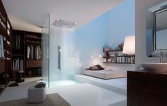 A walk-in shower in a walk-in closet. This great!