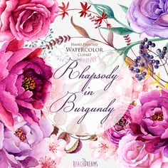 Watercolor Burgundy Floral Elements Peonies and by ReachDreams