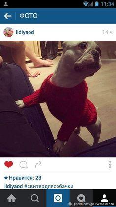 Купить Одежда вязаная для животных (собачки или кошки) Dinosaur Stuffed Animal, Animals, Animales, Animaux, Animal, Animais