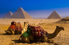 2-Night Private Cairo City Break with Dinner Cruise and Visits to Pyramids and Old Cairo 						Spend a short trip to Egypt and see the most important tourist attractions to discover the secret of the ancient Pharaonic civilization. At night enjoy an Egyptian Nile Dinner cruise with Egyptian folklore. 		 								Day 1:Arrival at Cairo International Airport, assistance with luggage and transfer to your hotel by a private car with air conditioning. You will be assisted by a repre...