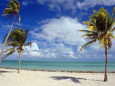 Путешествие по Америке Майами