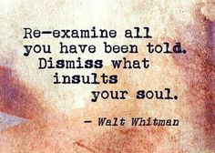 Re-examine all you have been told. Dismiss what insults your soul. -Walt Whitman Re-examine all you have been told. Dismiss what insults your soul. Great Quotes, Quotes To Live By, Me Quotes, Inspirational Quotes, Wisdom Quotes, Motivational Quotes, Walt Whitman Quotes, Note To Self, Quotable Quotes