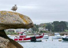 port de Ploumanac'h côtes d'armor Bretagne