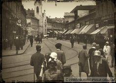 Oradea Romania Romania, Street View, City, Fun Stuff, Beautiful, Fun Things, Cities