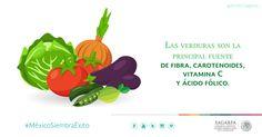 Las verduras son la principal fuente de fibra, carotenoides, vitamina C y ácido fólico. SAGARPA SAGARPAMX #MéxicoSiembraÉxito