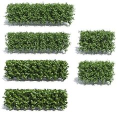 Find Bushes Isolated On White Background stock images in HD and millions of other royalty-free stock photos, illustrations and vectors in the Shutterstock collection. Thousands of new, high-quality pictures added every day. Landscape Design Plans, Landscape Materials, Tree Plan Png, Tree Photoshop, Bushes And Shrubs, Urban Design Plan, Supermarket Design, Urban Nature, Tree Shop