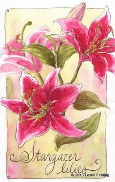 Artist:  Leslie Fehling  –  Media:  Watercolor and Ink